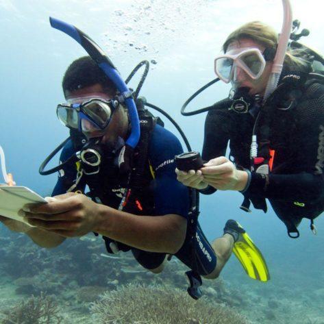 Underwater Navigation Diver PADI