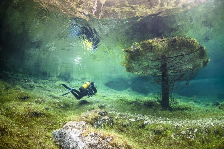 Immersioni in acque fredde