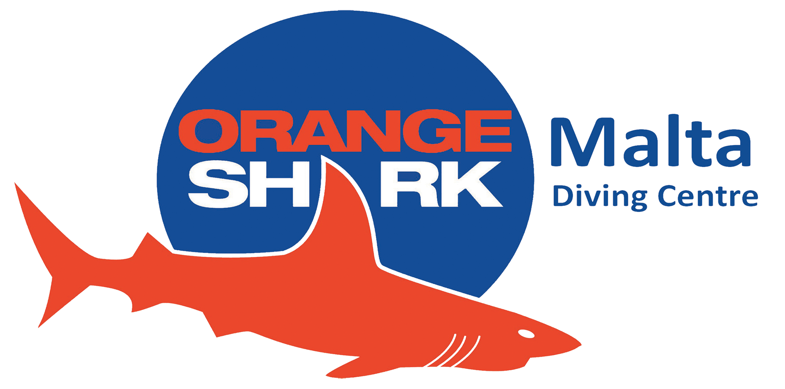 Diving a Malta: Orange Shark